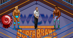 WCW SuperBrawl Wrestling (USA)