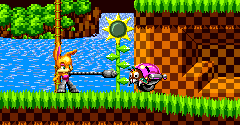 Bunnie Rabbot in Sonic 1 (Hack)