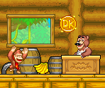 Brothers Bear (Donkey Kong: King of Swing-Style)