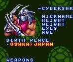 SNES - Teenage Mutant Ninja Turtles: Tournament Fighters