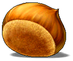 Giant Chestnut