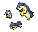 Cyndaquil, Quilava & Typhlosion