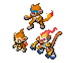 Chimchar, Monferno & Infernape