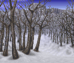 White Birch Forest (Battle Backdrop)