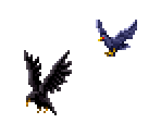 Black Crow & Blue Raven