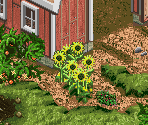 Hayseed Farm (December 2, 2003)