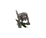 Deathclaw (Grey)