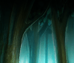 Quest Backgrounds