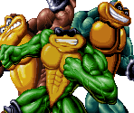 Portraits (Battletoads)
