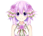 Neptune (Pink Carnation)